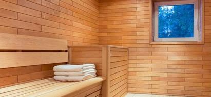 Sauna Dual